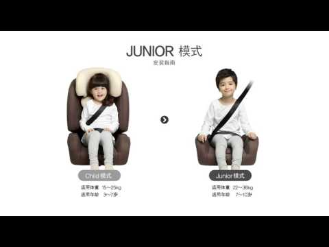 D-guard Toddler (D-1004)后向安装指南